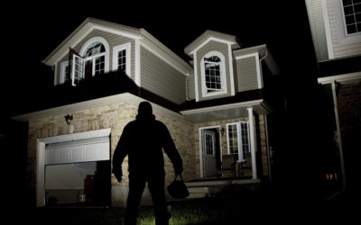 Phoenix Home Security System